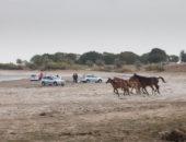 Песчаный берег озера Балхаш, тест-драйв внедорожной Лады Калины. Автомобили Лада Калина 2. Новости, описание, видео.